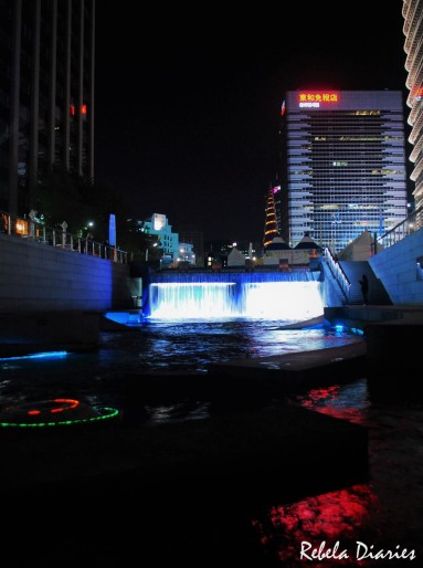 Cheonggyecheon Stream 4