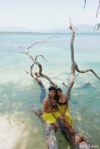 Magalawa Island fallen tree