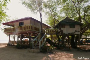 Magalawa Island tree house