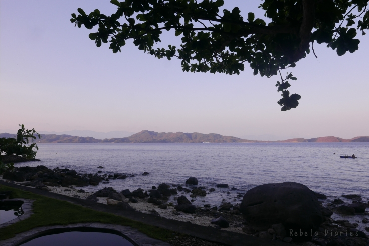 Mornings at Anilao